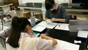 高3 理系生物選択者 実験中
